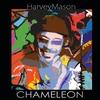 Couverture de l'album Chameleon