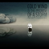 Cover of the album Cold Wind Is the Promise of a Storm - Post-Rock Pl Compilation, Vol. 2