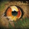 Couverture de l'album Komm mit