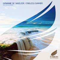 Cover of the track Endless Summer - Single