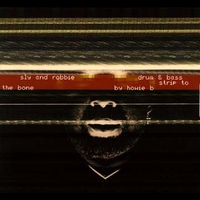 Cover of the track Drum & Bass Strip to the Bone by Howie B