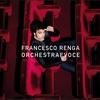 Cover of the album Orchestraevoce