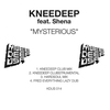 Cover of the album Mysterious (feat. Shena) - EP