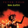 Couverture de l'album Bush Doctor