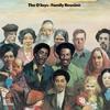 Couverture de l'album Family Reunion