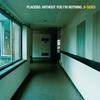 Couverture de l'album Without You I'm Nothing: B-Sides