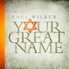 Cover of the album Your Great Name