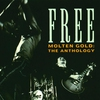 Couverture de l'album Molten Gold: The Anthology (Box Set)