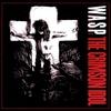 Couverture de l'album The Crimson Idol