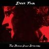 Couverture de l'album The Black Dirt Sessions