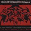 Couverture de l'album Endzeit Bunkertracks - Act III: The Alfa Matrix Selection