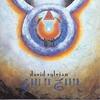 Couverture de l'album Gone to Earth