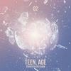 Couverture de l'album SEVENTEEN 2nd Album 'Teen, Age'