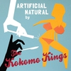 Cover of the album Artificial Natural