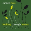 Cover of the album Looking Through Leaves