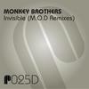 Couverture de l'album Invisible (M.O.D Remixes) - Single
