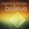 Couverture de l'album Believe - Single