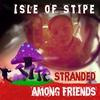 Couverture de l'album Stranded Among Friends