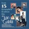 Cover of the album Los 15 Grandes Exitos de Juan Gabriel
