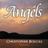 Couverture de l'album Presents of Angels