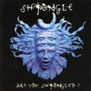 Cover of the album Are You Shpongled?