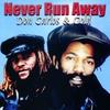 Couverture de l'album Never Run Away