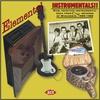 Couverture de l'album Elemental Instrumentals! Raw Primitive Instrumentals Rock From Cuca Records of Wisconsin, 1959-1965