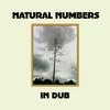Couverture de l'album Natural Numbers in Dub