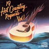 Cover of the album 19 Hot Country Requests