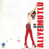 Cover of the track Bir Düş Kurdum