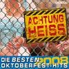 Couverture de l'album Achtung Heiss - Die besten Oktoberfest-Hits 2008