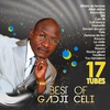 Couverture de l'album Best of Gadji Celi (17 tubes)