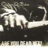 Couverture de l'album Are You Dead Yet?