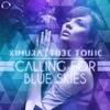Couverture de l'album Calling for Blue Skies (Remixes)
