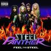 Couverture de l'album Feel the Steel