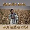 Couverture de l'album Mother Afrika