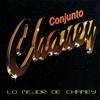 Couverture de l'album Lo Mejor de Chaney