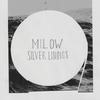 Couverture de l'album Silver Linings