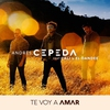 Cover of the track Te Voy a Amar (Video Oficial) ft. Cali Y El Dandee