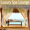 Couverture de l'album Luxury Spa Lounge - Ultimate Wellness Resort Boutique Relax Chillout
