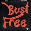 Cover of the album Bust Free 12