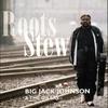 Couverture de l'album Roots Stew