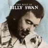 Couverture de l'album The Best of Billy Swan