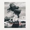 Couverture de l'album Blind über Rot