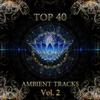 Couverture de l'album Top 40 Ambient Tracks, Vol. 2