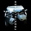 Couverture de l'album Frontalcrash