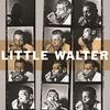 Couverture de l'album The Complete Chess Masters (1950-1967)
