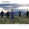 Cover of the album Flower & Iron