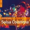 Couverture de l'album Rough Guide to Salsa Colombia