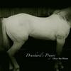 Cover of the album Drunkard's Prayer